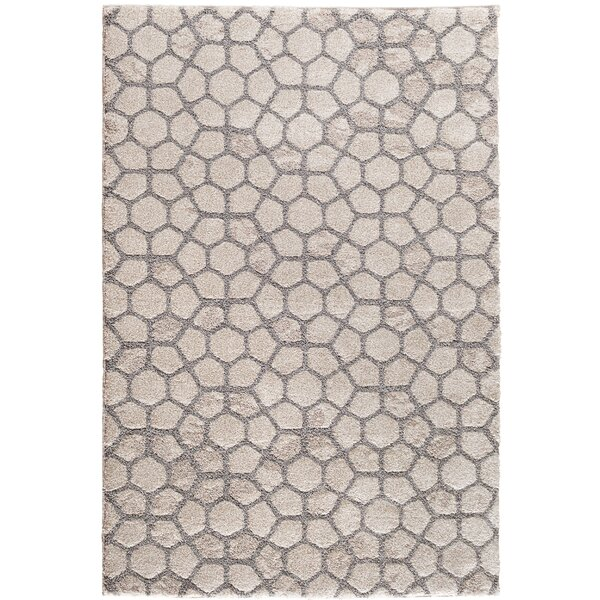 Willmar Parchment Beige/Gray Area Rug by Trisha Yearwood Home Collection