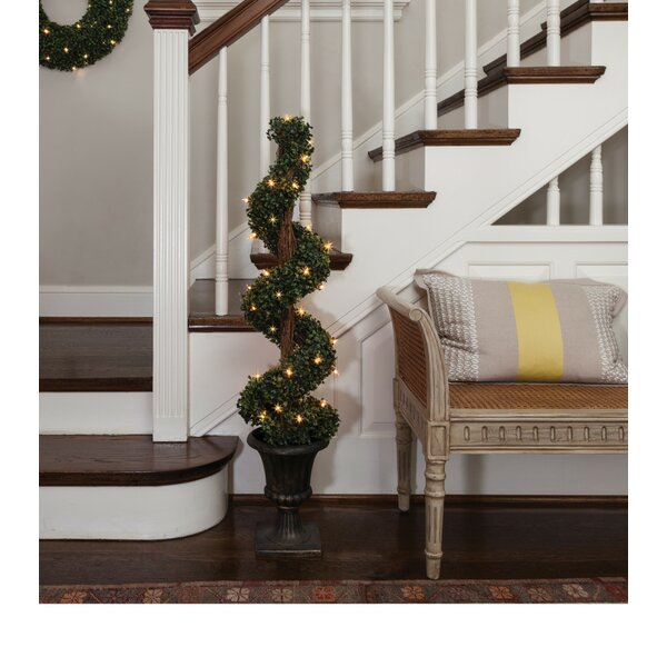 Potted Spiral Tree Boxwood Floor Topiary in Urn by The Holiday Aisle