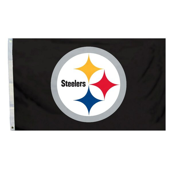NCAA Traditional Polyester 3 X 5 ft. Flag by Team Pro-Mark