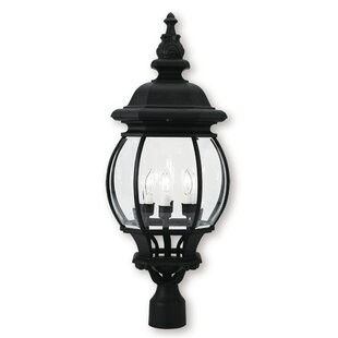 Affordable Kelly Outdoor 4-Light Lantern Head By Darby Home Co