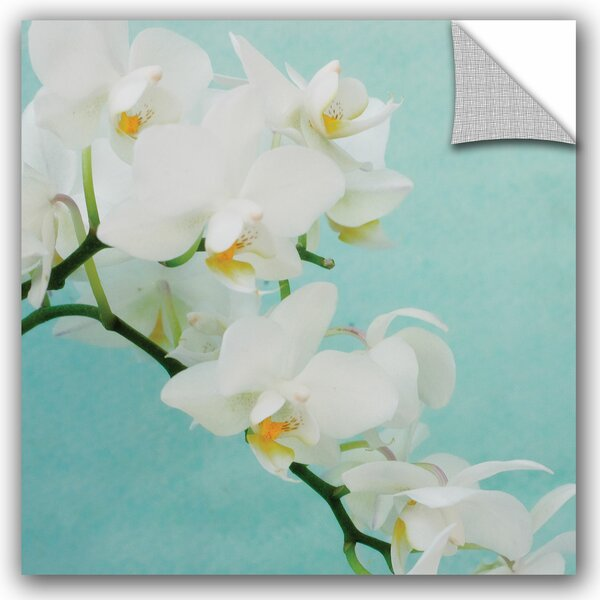 Judy Stalus White Spray Wall Decal by ArtWall