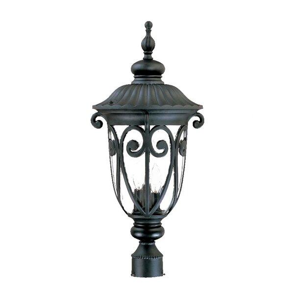 Appalachian Outdoor 3-Light Lantern Head by Astoria Grand