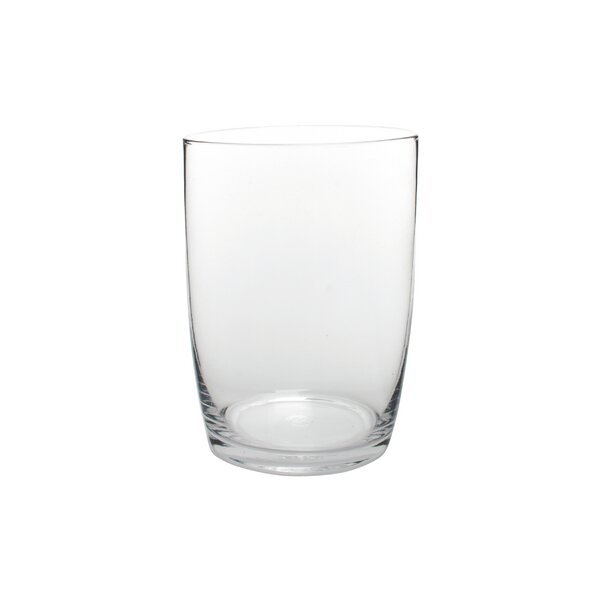 Maxwell Ryan 22 Oz. Juice Glass (Set of 4) by Canvas Home