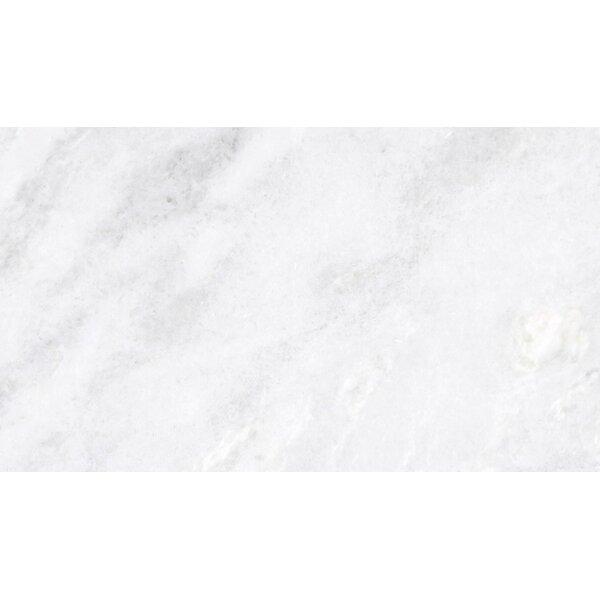Marble 3 x 6 Subway Tile in Kalta Bianco by Emser Tile