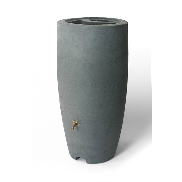 Ainsley Rain Barrel by Charlton Home