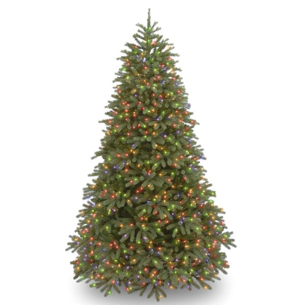 Jersey Fraser Fir Green Fir Artificial Christmas Tree with 1000 Multi Lights and Stand by The Holiday Aisle