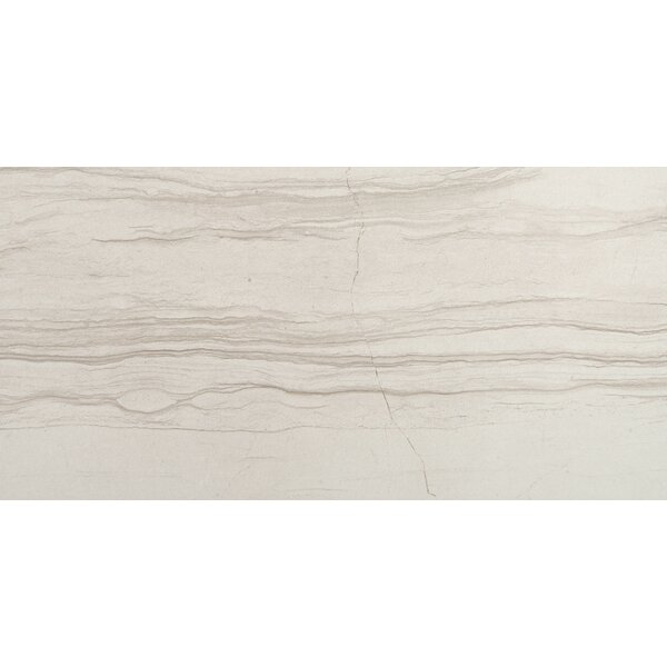Action 11 x 23 Porcelain Field Tile in Cue by Emser Tile