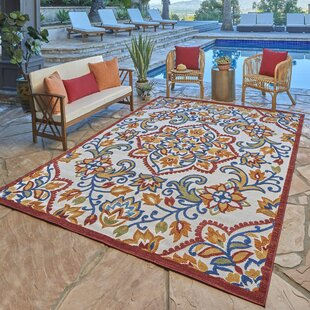 Silverview Dijon Red Indoor/Outdoor Area Rug by Winston Porter