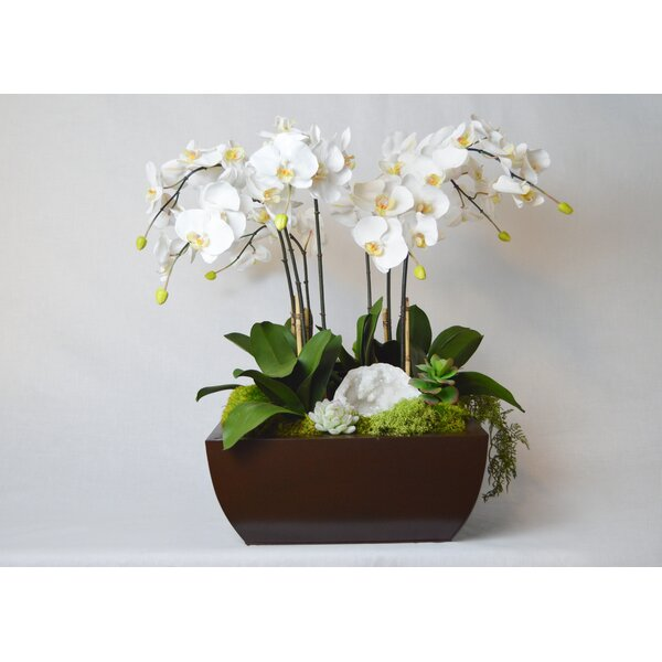 Orchid and Geode in Metal Box by Greyleigh
