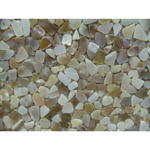 Mesh Mounter 12 x 12 Seashell Mosaic Tile in Natural Mother of Pearl by Matrix-Z
