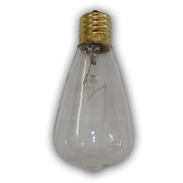 7W E26 Incandescent Vintage Filament Light Bulb by Aspen Brands