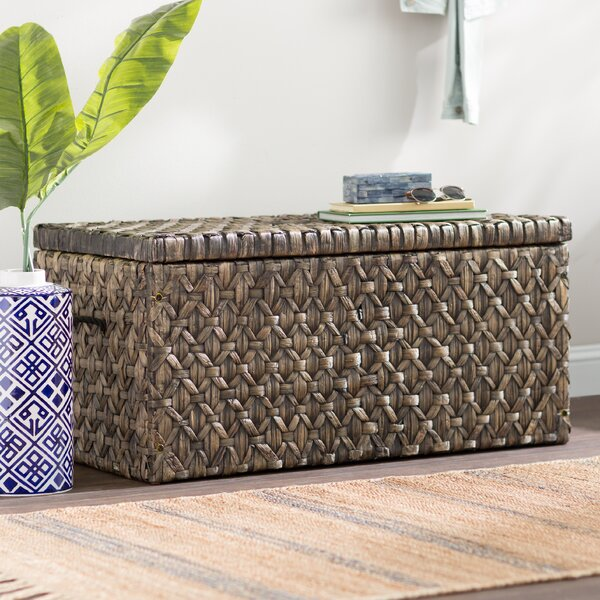 Silvers Hyacinth Storage Trunk by Bay Isle Home