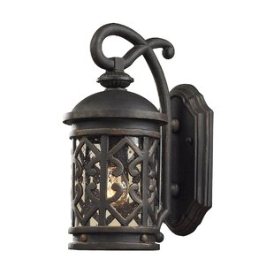 Find Robyn 1-Light Outdoor Wall Lantern By Darby Home Co