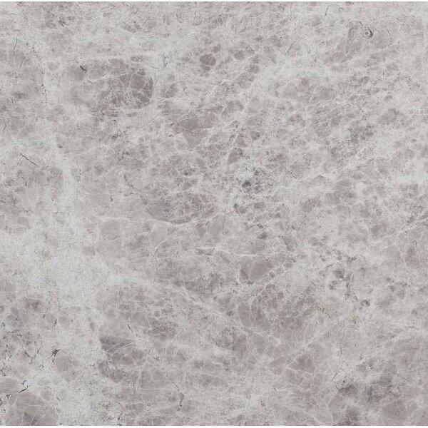 6 x 12 Marble Field Tile in Silver Shadow by Ephesus Stones