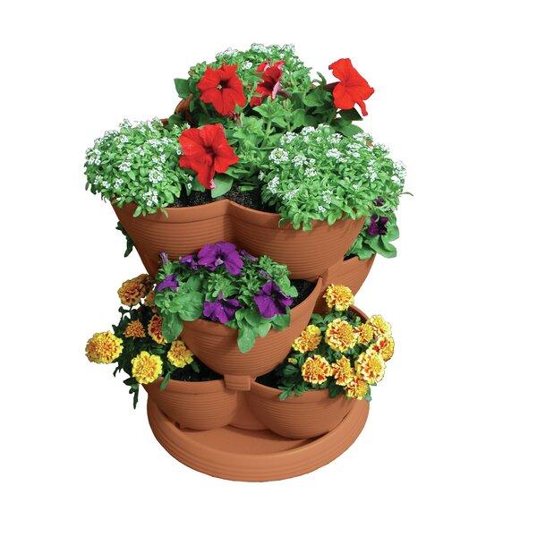 Self-Watering Plastic Pot Planter by Akro-Mils Lawn & Garden