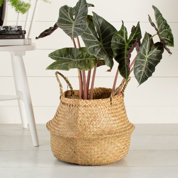 Seagrass Basket with Handles by Langley Street