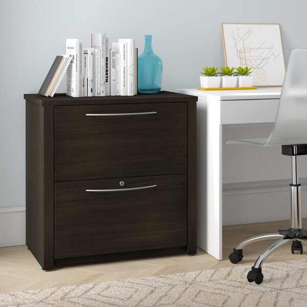 Lexington 2 Drawer File Cabinet by Zipcode Design