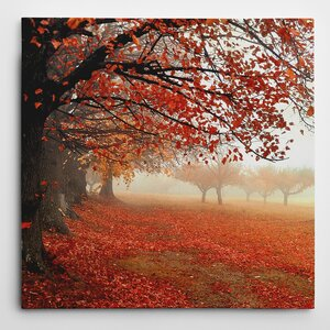 Premium 'All for Show' by Irene Weisz Photographic Print on Wrapped Canvas by Wexford Home