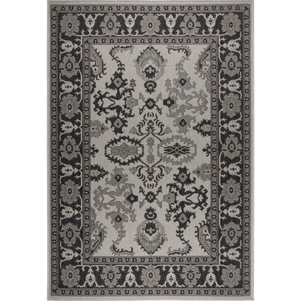 Bordered Gray/Black Indoor/Outdoor Area Rug by Nicole Miller