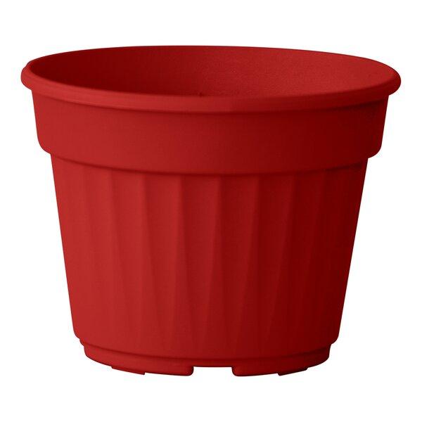 Nitsan Plastic Pot Planter (Set of 3) by ALMI