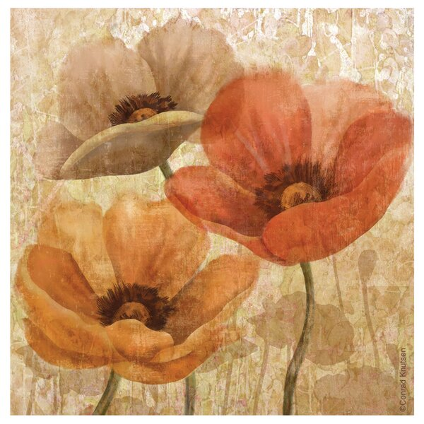 Poppy Allure II Occasions Coasters Set (Set of 4) by Thirstystone