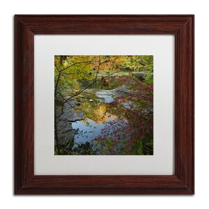 Why I Love Autumn 3 by Kurt Shaffer Framed Photographic Print in Brown by Trademark Fine Art