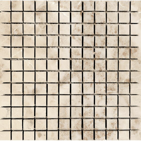 1 x 1 Stone Mosaic Tile in Cappuccino Polished by Parvatile