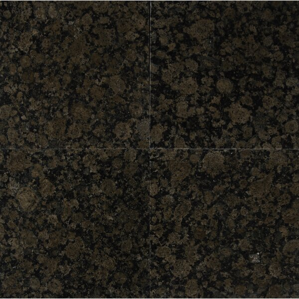 Baltic 12 x 12 Granite Field Tile in Brown by MSI