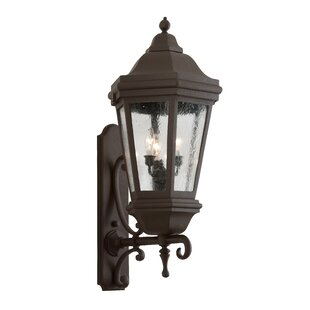 Order Theodore 2-Light Outdoor Sconce By Darby Home Co