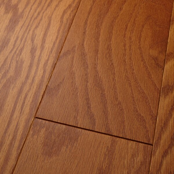 Americano 5 Engineered Oak Hardwood Flooring in Matte Glossy Honey Grove by Welles Hardwood