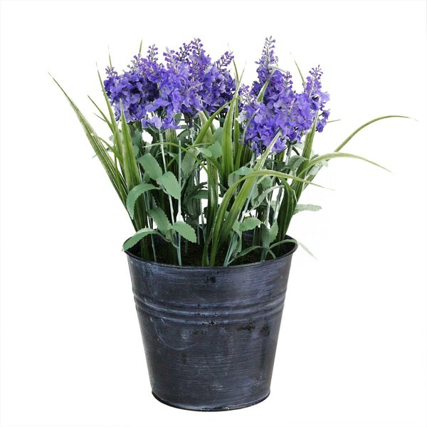 Artificial Lavender Floral Arrangement in Pot by Ophelia & Co.