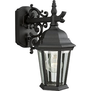 Triplehorn 1-Light Outdoor Clear Wall Lantern