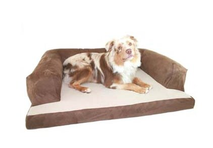 Frankie Baxter Couch Bolster Dog Bed by Tucker Murphy Pet
