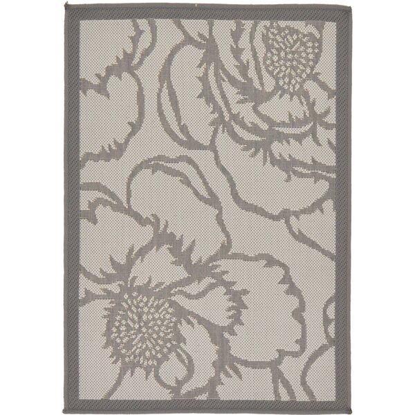 Barriga Floral Gray Indoor/Outdoor Area Rug
