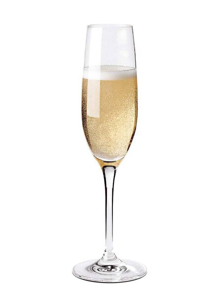 Fusion Classic Champagne Flute (Set of 4) by Wine Enthusiast