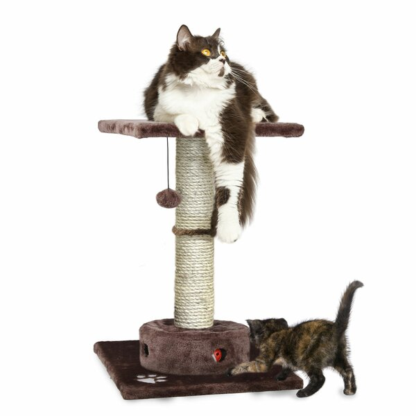 23 Maye Cat Perch by Tucker Murphy Pet