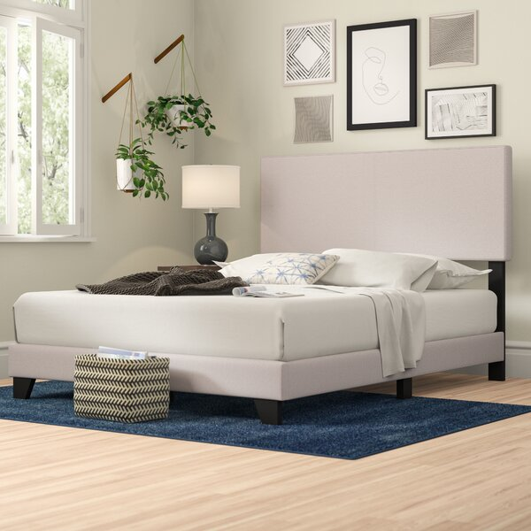 Newport Upholstered Standard Bed by Zipcode Design