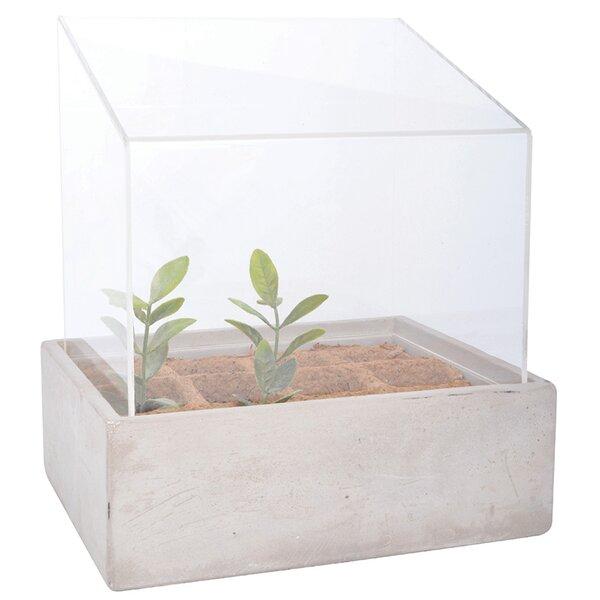 Lean to Roof Glass Terrarium by EsschertDesign