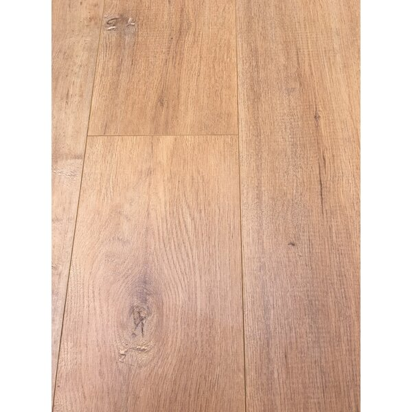 European Oak 8 x 49 x 12mm Laminate Flooring in Tan (Set of 4) by Christina & Son