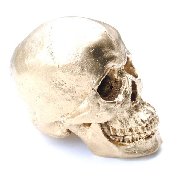 Faux Human Skull Table Top Sculpture by The Holiday Aisle