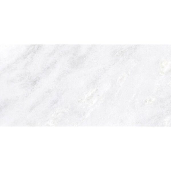 Marble 16 x 32 Tile in Kalta Bianco by Emser Tile