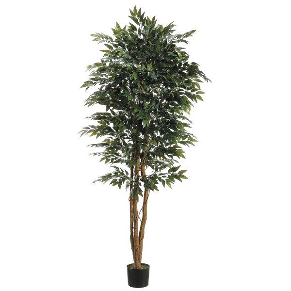 Smilax Tree in Pot by Fleur De Lis Living