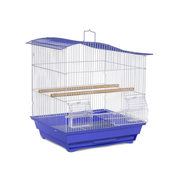 Tanya Pet Wave Top Cockatiel Bird Cage with Removable Tray by Tucker Murphy Pet