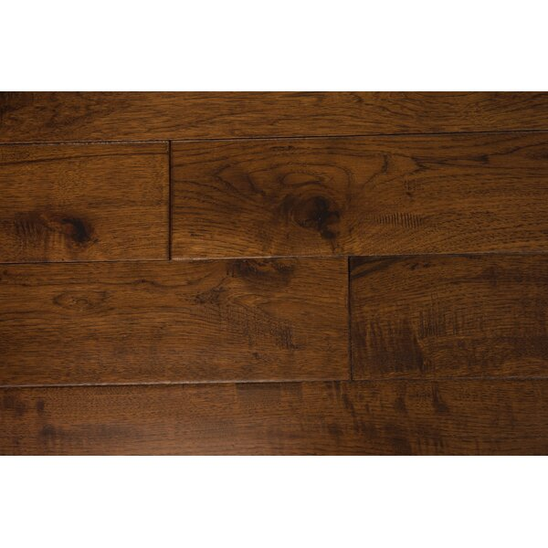 Thames 5 Solid Hickory Hardwood Flooring in Clove by Branton Flooring Collection