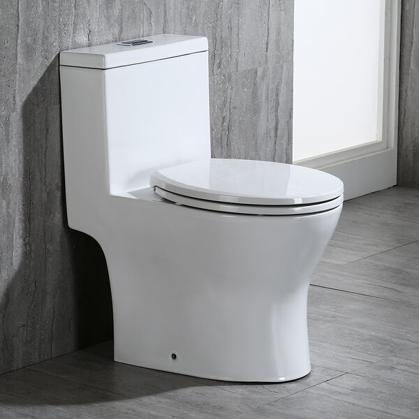 Dual Flush 1.6 GPF Elongated One-Piece Toilet by WoodBridge