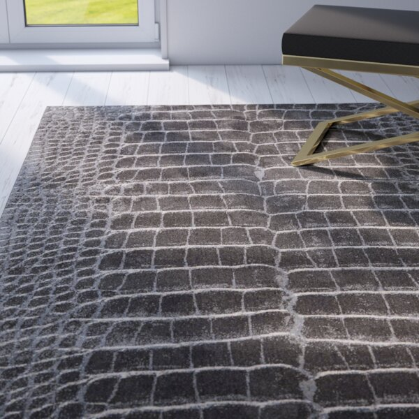 Ruthann Charcoal Area Rug by Willa Arlo Interiors