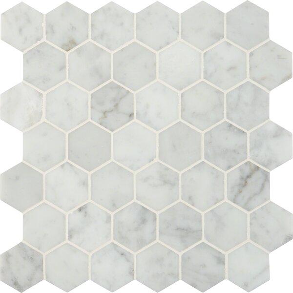 Carrara Hexagon 2 x 2 Marble Mosaic Tile in White by MSI