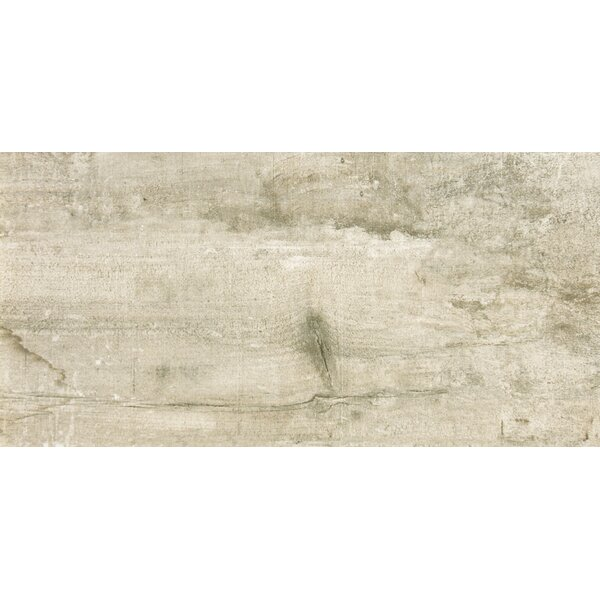 Ranch 24 x 35 Porcelain Wood Look Tile in Land by Emser Tile
