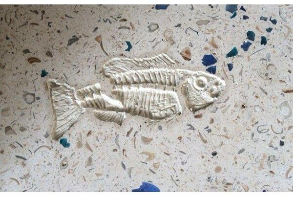 6 x 6 SeaStone Cement Whole Fish Fossil Impression Medallion Tile in White by Matrix-Z
