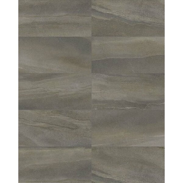Core 12 x 24 Porcelain Field Tile in Cameleon by Parvatile